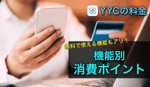 YYCの料金プラン・消費ポイントを詳しく解説【男性必見】